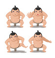 sumo japan culture cartoon character vector image vector image