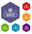 winter icons hexahedron vector image vector image