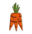 carrot vegetable icon image vector image vector image