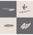 Feather logotype design templates vector image