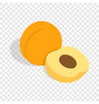 fresh apricot fruits isometric icon vector image