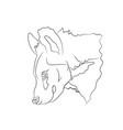 hyena portrait lines vector image vector image