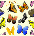 colorful different butterfly wings seamless vector image vector image