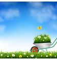 garden wheelbarrow and grass vector image vector image