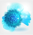 water flower vector image vector image