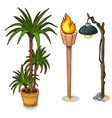 interior palm in pot torch and electric lantern vector image