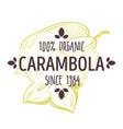 100 percent organic carambola or star fruit label vector image vector image