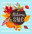 autumn sale design vector image vector image