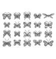 beautiful tropical butterflies set vector image vector image
