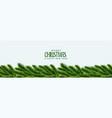 elegant christmas tree green leaves banner design vector image