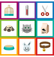 flat icon pets set of feeding puppy hound vector image vector image