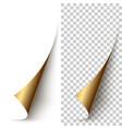 golden foil vertical paper corner rolled up vector image