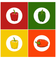 Set of Icons Pepper vector image