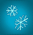 snowflakes winter snow cold vector image