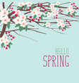 spring landscape with branches of blooming tree vector image