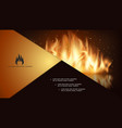 glowing hot fire composition vector image vector image