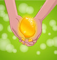 Gold Easter egg on hands vector image