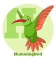 abc cartoon hummingbird vector image