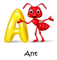 Cartoon A of letter for Ant vector image vector image