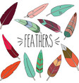 colorful outline feathers vector image vector image