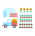 greenhouse conservatory icons vector image