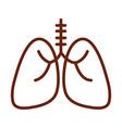 human body lungs respiratory anatomy organ health vector image