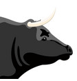 isolated bull head farm animal vector image