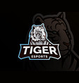 tiger mascot sport logo design vector image vector image