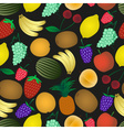 colorful various fruit summer seamless dark vector image vector image