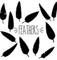 feathers silhouette vector image vector image