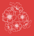 hand drawn poppies isolated vector image vector image