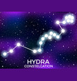 hydra constellation starry night sky cluster of vector image vector image