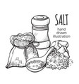 salt in a sack hand drawn set vector image