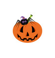 set with halloween pumpkin and spider background vector image