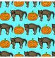 Sketch cat and pumpkin vector image vector image