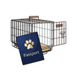 travel with cats dogs - metal wire carrier and vector image vector image
