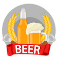 a bottle of beer a mug of beer spikelets bottle vector image
