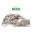 beer bottle and cancer sitting on a bottle craft vector image vector image