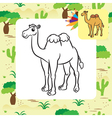 camel coloring page vector image vector image