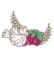 cute dove bird with grapes fruits vector image