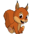 Cute squirrel on white background vector image