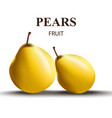 fresh pears realistic tasty fruits vector image vector image