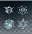 ice crystal snowflakes vector image