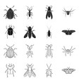 isolated object of insect and fly logo set of vector image vector image