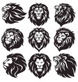 lion logo set collection package premium vector image