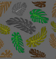 monstera leaves seamless textile pattern set of v vector image