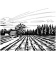 agricultural landscape with house vector image vector image