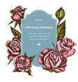 badge design with colored roses vector image vector image