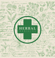 banner for herbal medicine in retro style vector image