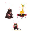 bear cat and giraffe at birthday party vector image
